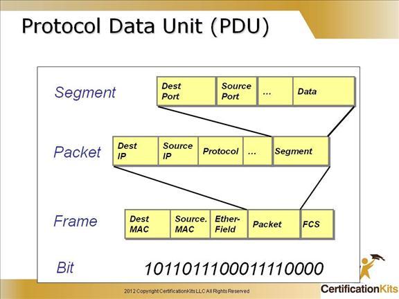 Data_Unit.jpg